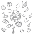 Set of fruits and vegetables with a basket in vector