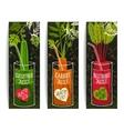 Drinking diet vegetable juice cartoon design on vector