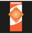 Vertical banner of grapefruit square slice space vector