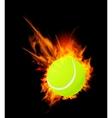 Tennis ball on fire vector