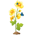 Fresh yellow flowers with butterflies vector