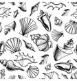 Sea shells sketch background vector