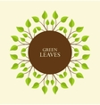 Branches with leaves vector