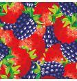 Raspberries vector