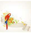 Summer banner with floral ornament and parrot vector