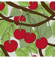 Cherry seamless pattern vector