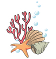 Shells and starfish under the sea vector