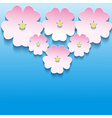 Abstract floral background with 3d flowers sakura vector