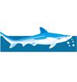 Shark vector