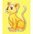 Lion cub vector