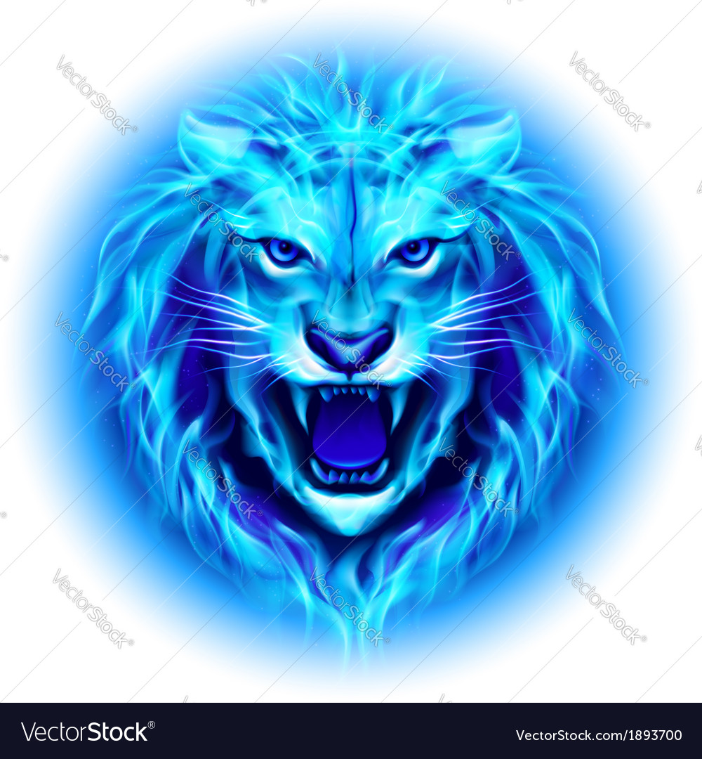 Head of fire lion vector   Price: 1 Credit (USD $1)