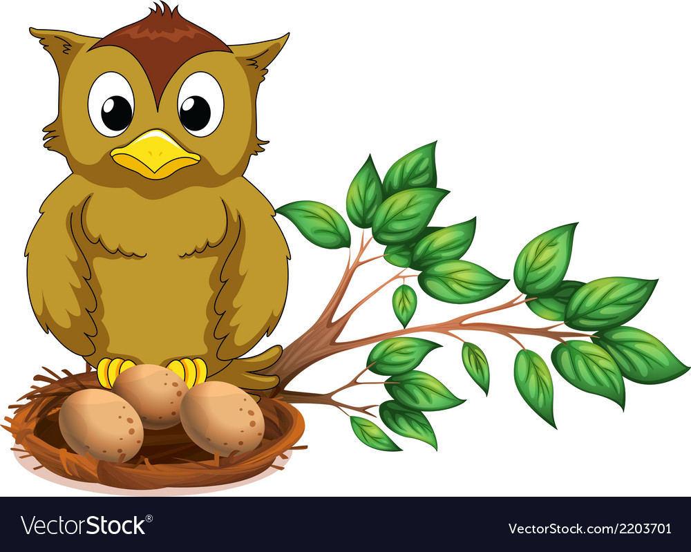 An owl watching her nest vector | Price: 1 Credit (USD $1)