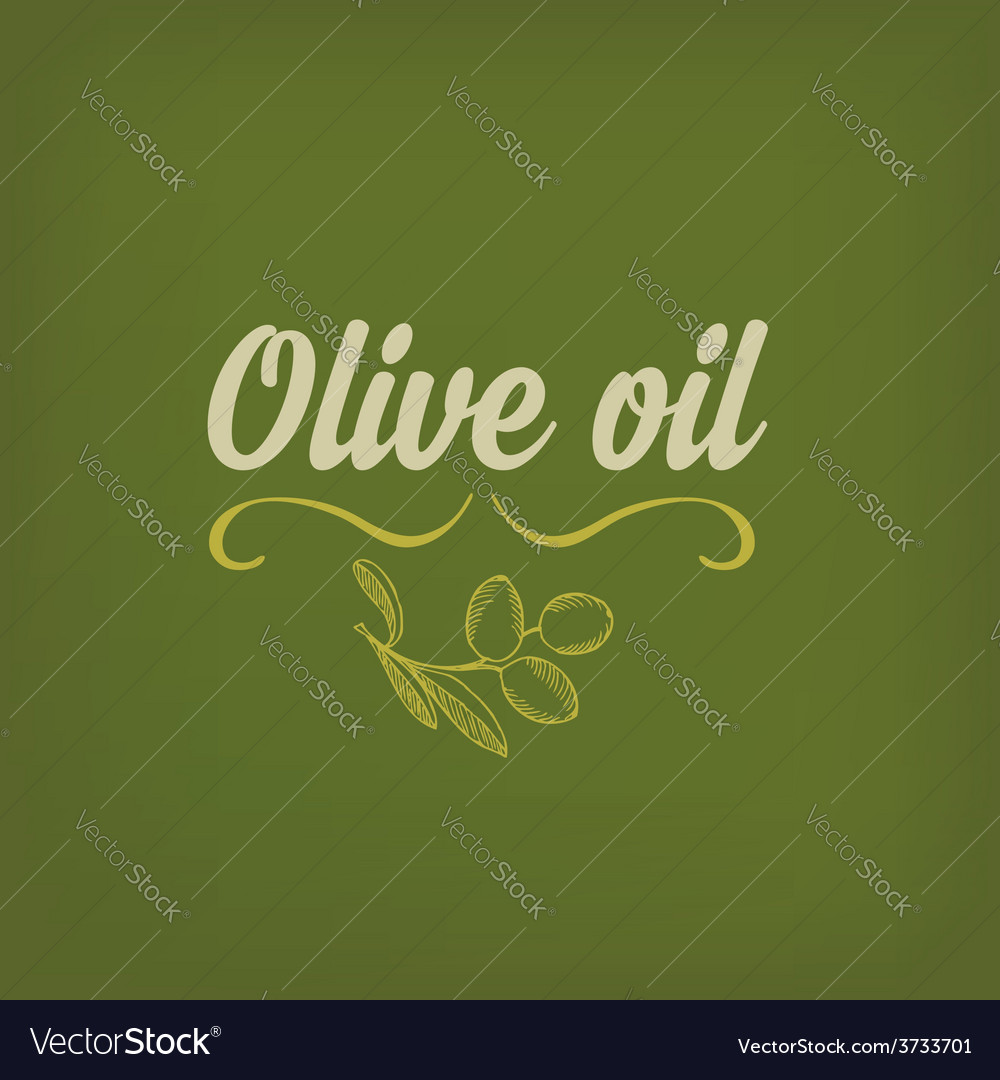 Olive oil design concept vector | Price: 1 Credit (USD $1)