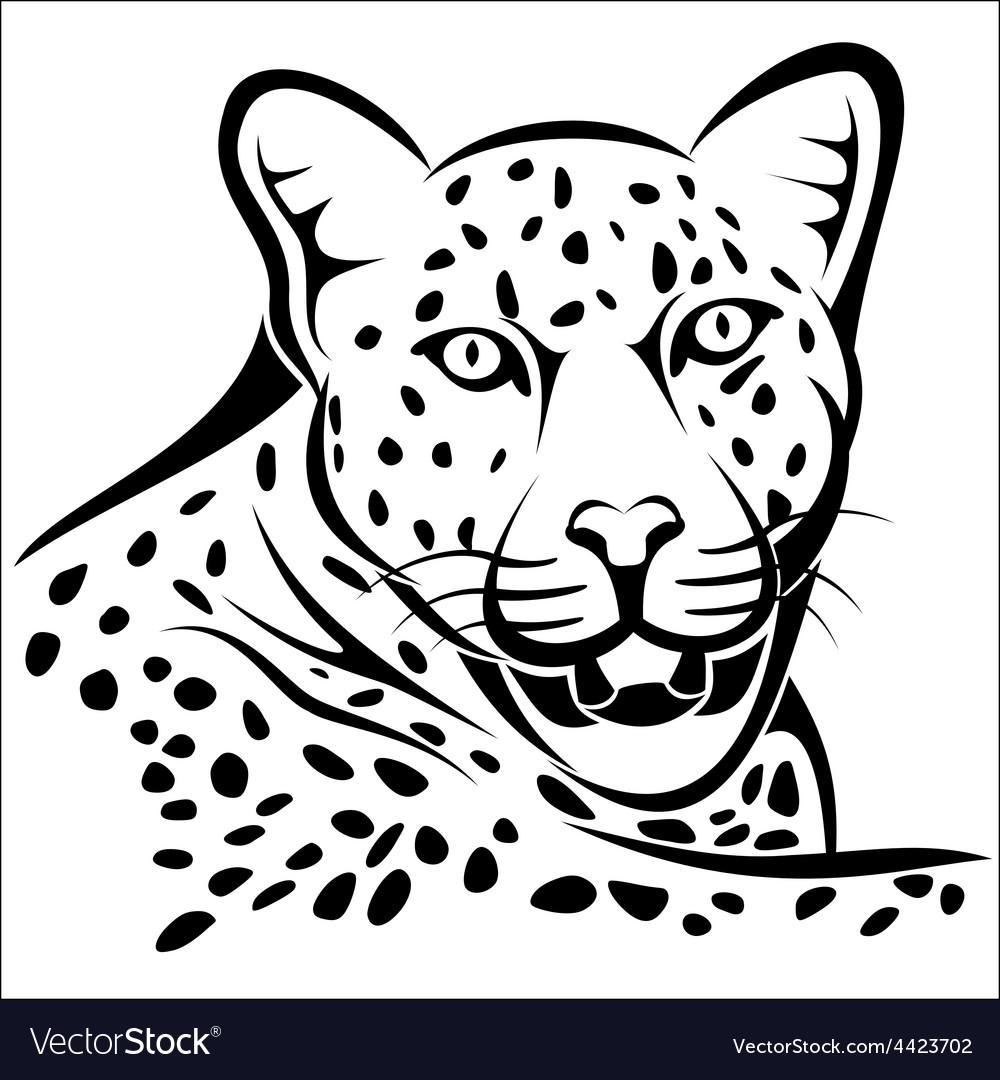 Leopard vector | Price: 1 Credit (USD $1)