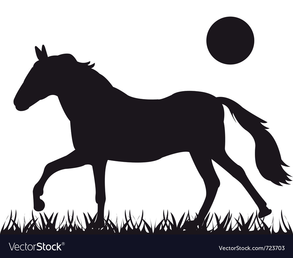 Silhouette of the horse vector | Price: 1 Credit (USD $1)