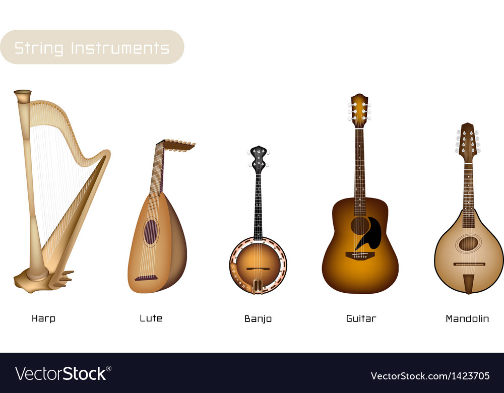 Five musical instrument strings vector | Price: 1 Credit (USD $1)