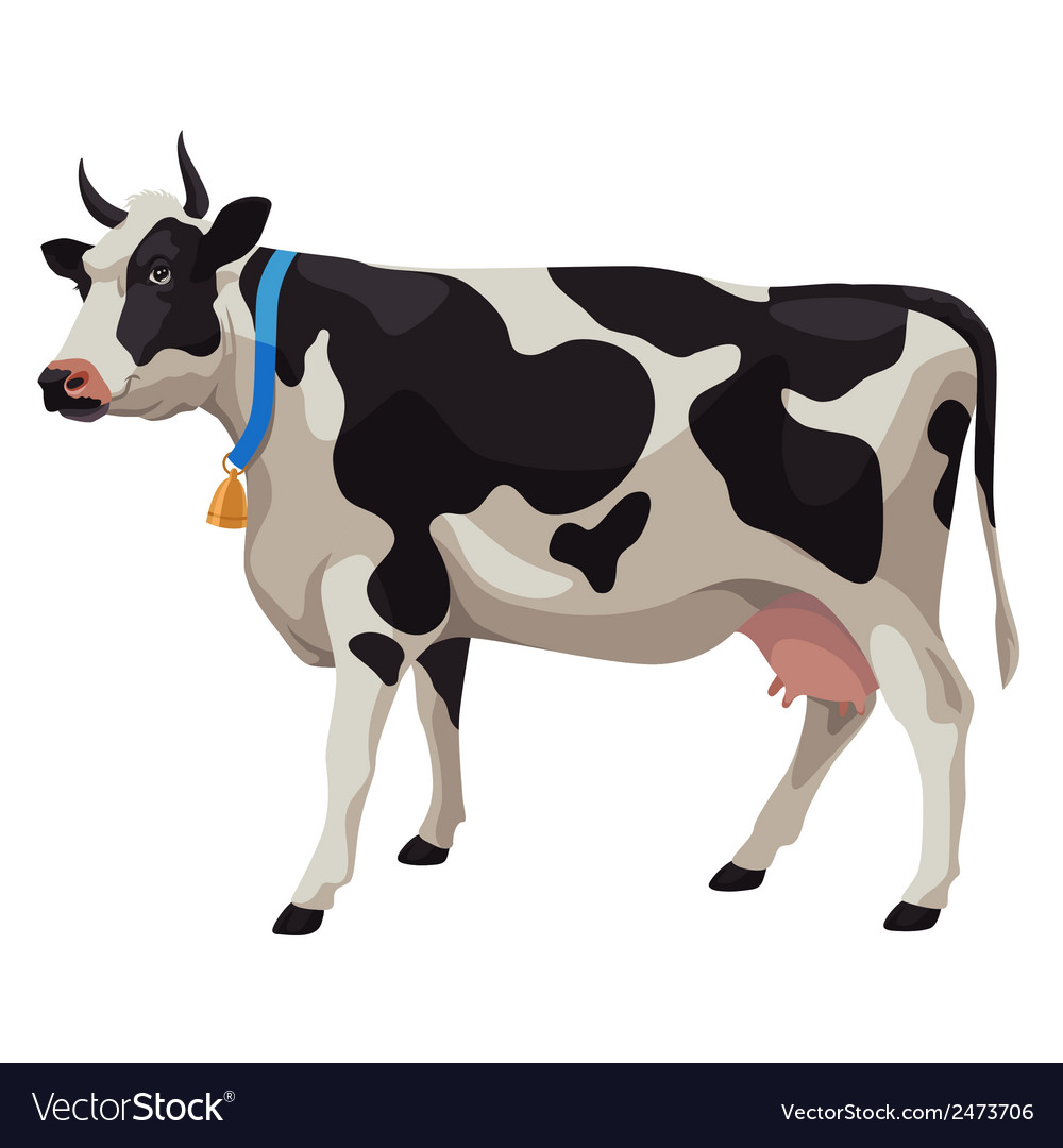 Black and white cow side view isolated vector | Price: 1 Credit (USD $1)