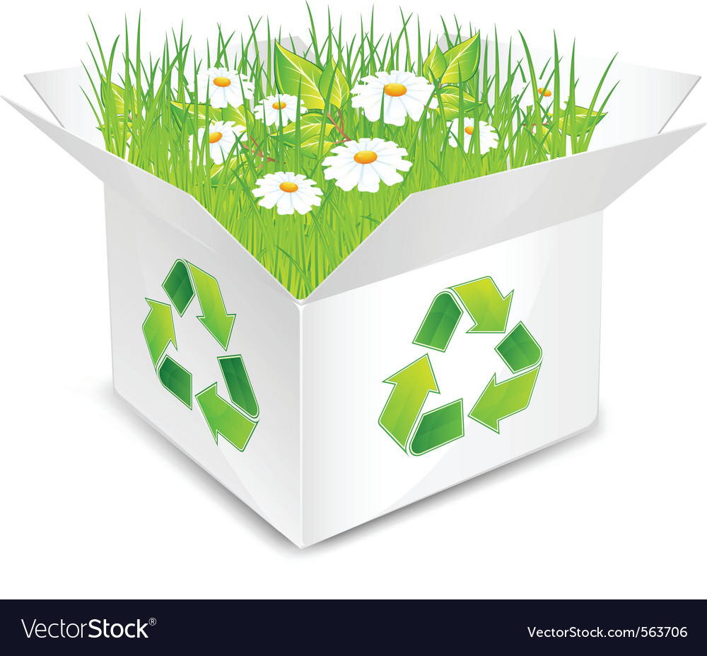 Eco box flowers and grass vector | Price: 1 Credit (USD $1)