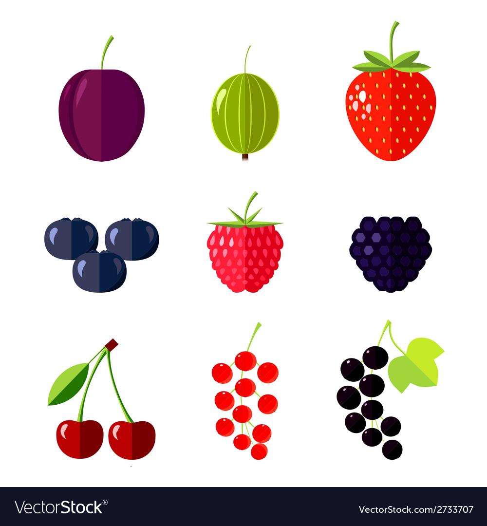 Berries flat vector   Price: 1 Credit (USD $1)