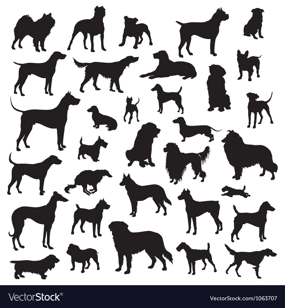 Dogs silhouette vector | Price: 1 Credit (USD $1)