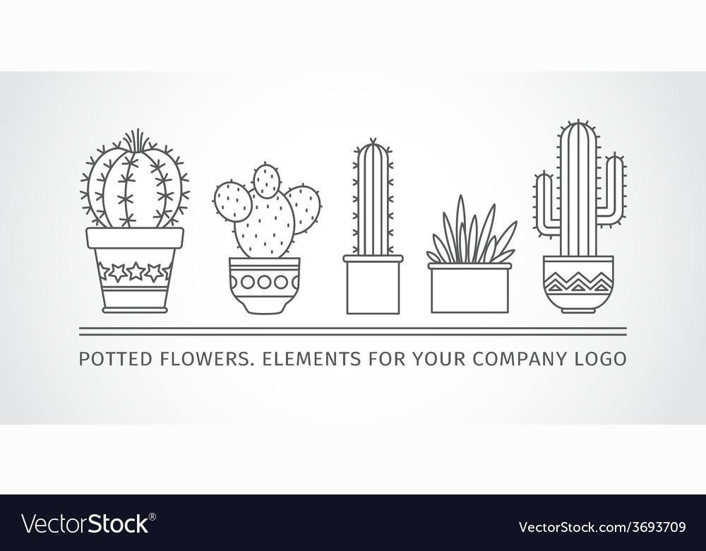Linear design potted cactus elements of a vector | Price: 1 Credit (USD $1)