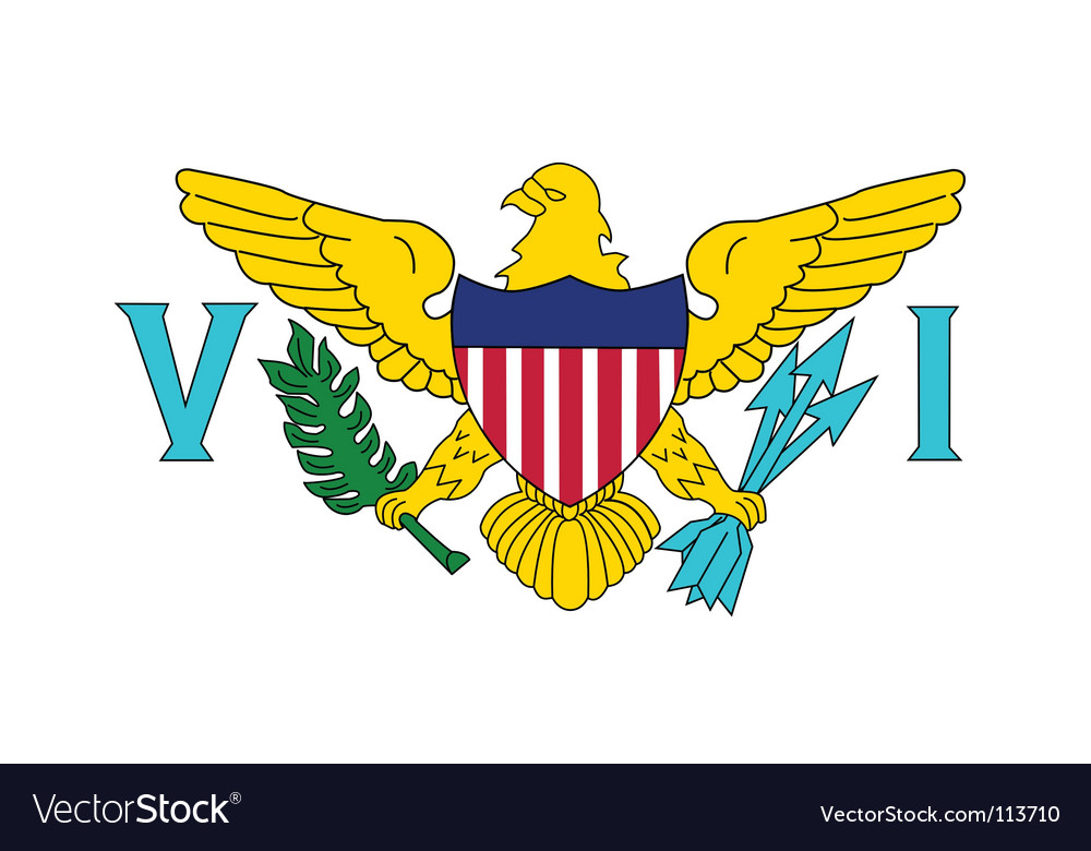 Virgin islands us flag vector | Price: 1 Credit (USD $1)