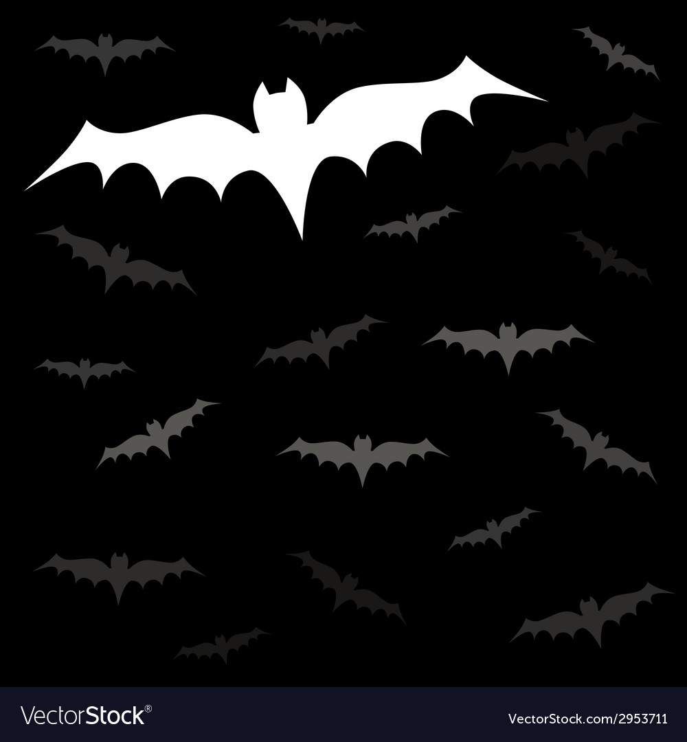 Bats night vector | Price: 1 Credit (USD $1)