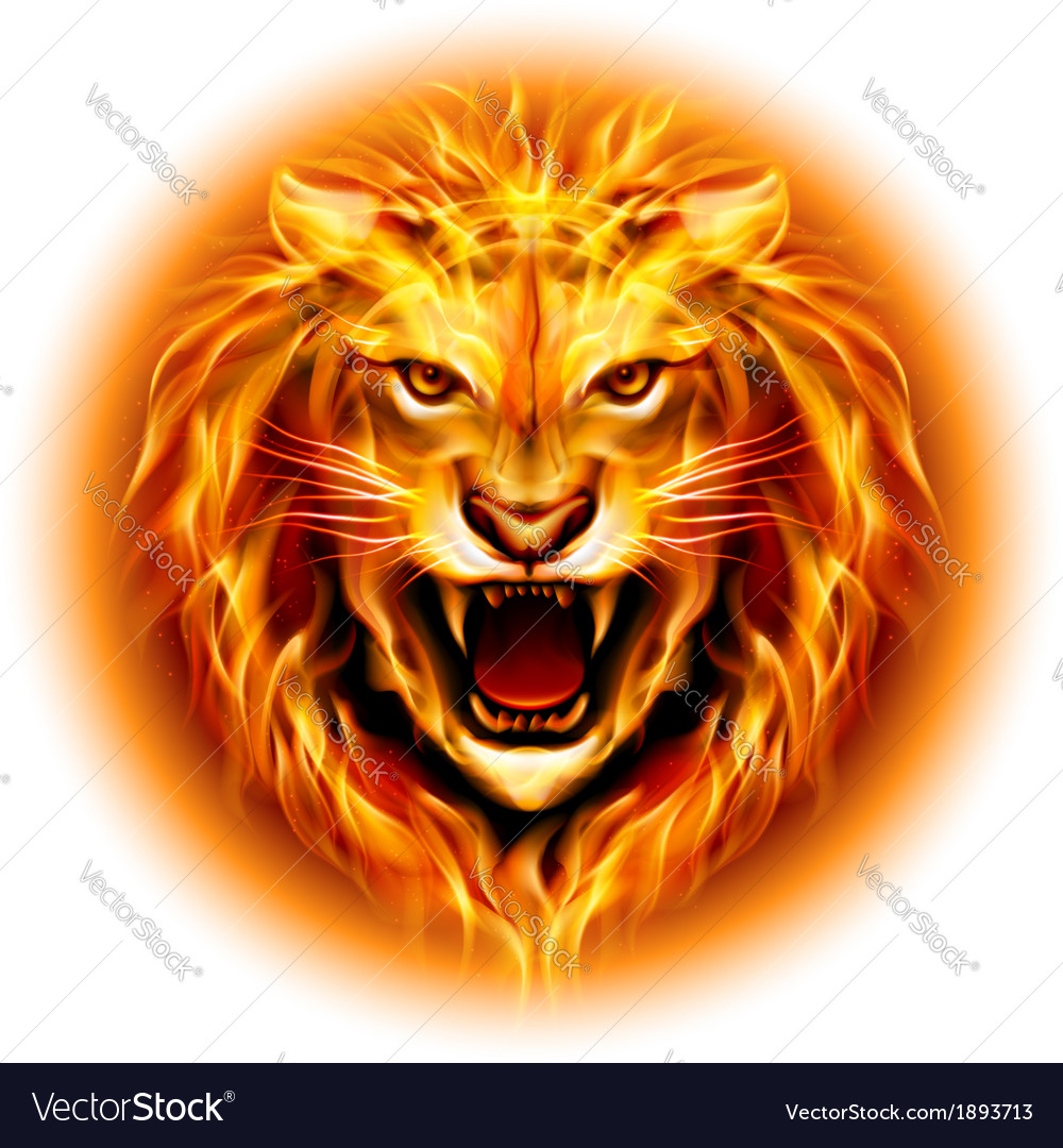 Head of fire lion vector | Price: 1 Credit (USD $1)