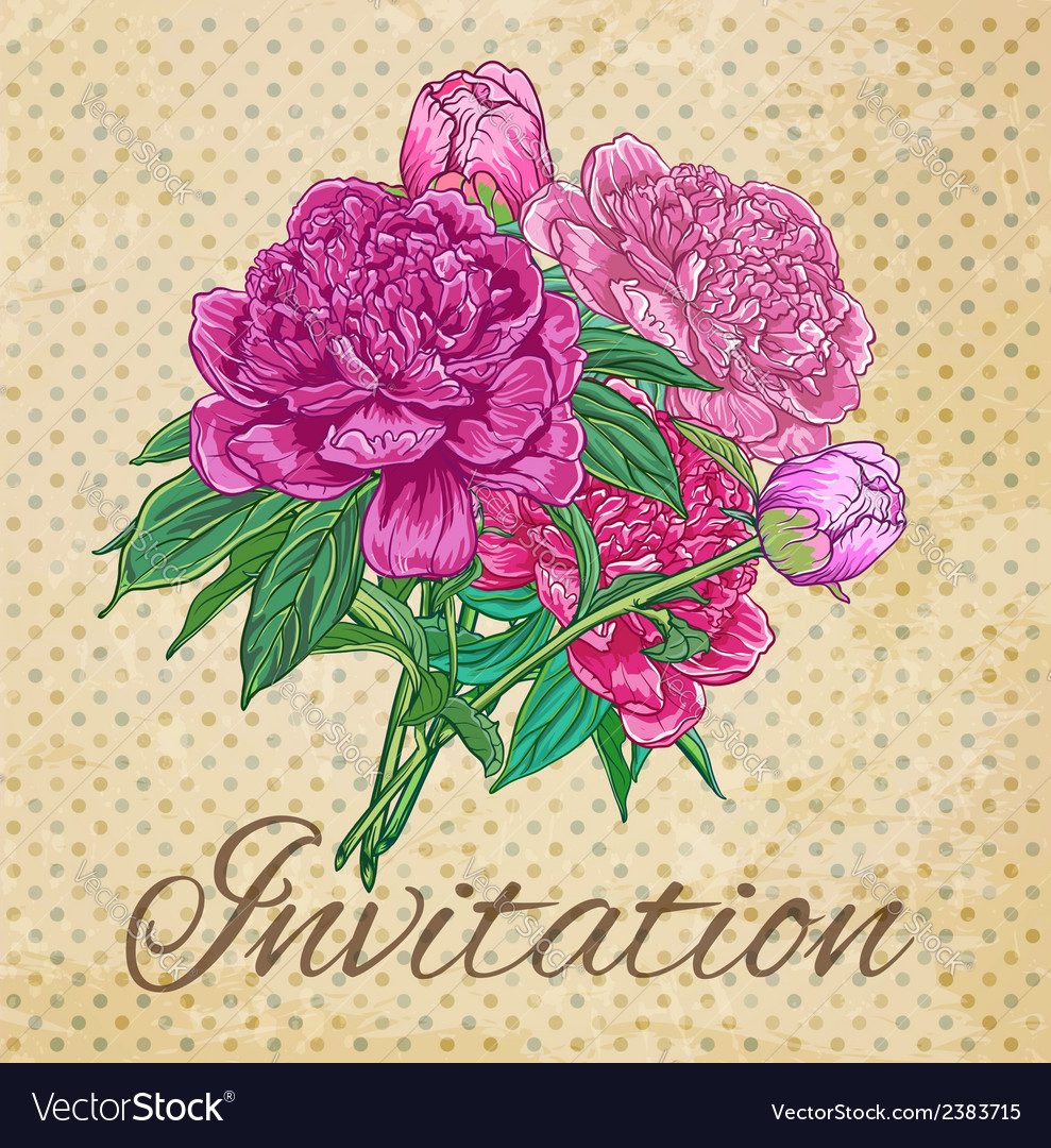 Vintage card with peonies vector | Price: 1 Credit (USD $1)