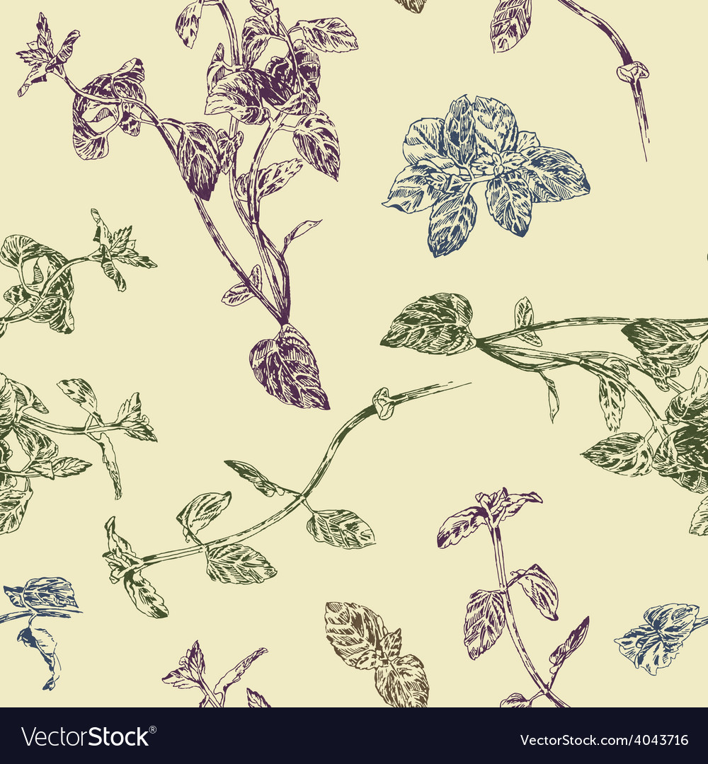 Seamless floral pattern with peppermint sprigs vector | Price: 1 Credit (USD $1)