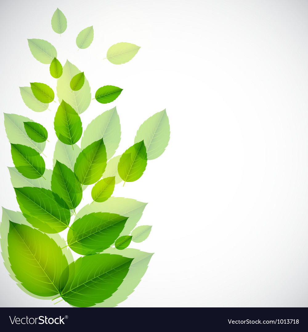 Abstract nature background with leaves vector | Price: 1 Credit (USD $1)