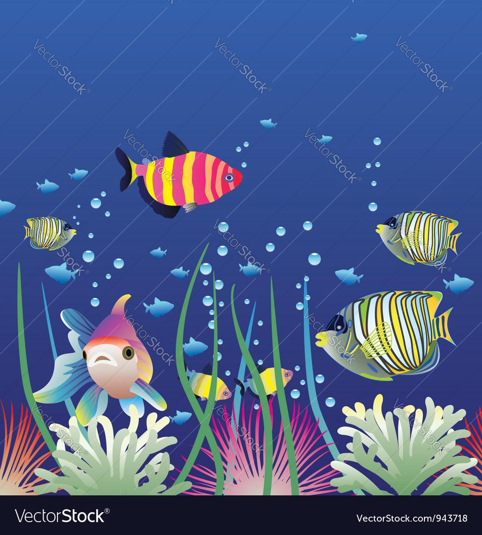 Aquarium and colorful fishes vector   Price: 1 Credit (USD $1)