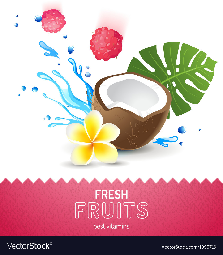 Background with fresh fruits vector | Price: 1 Credit (USD $1)