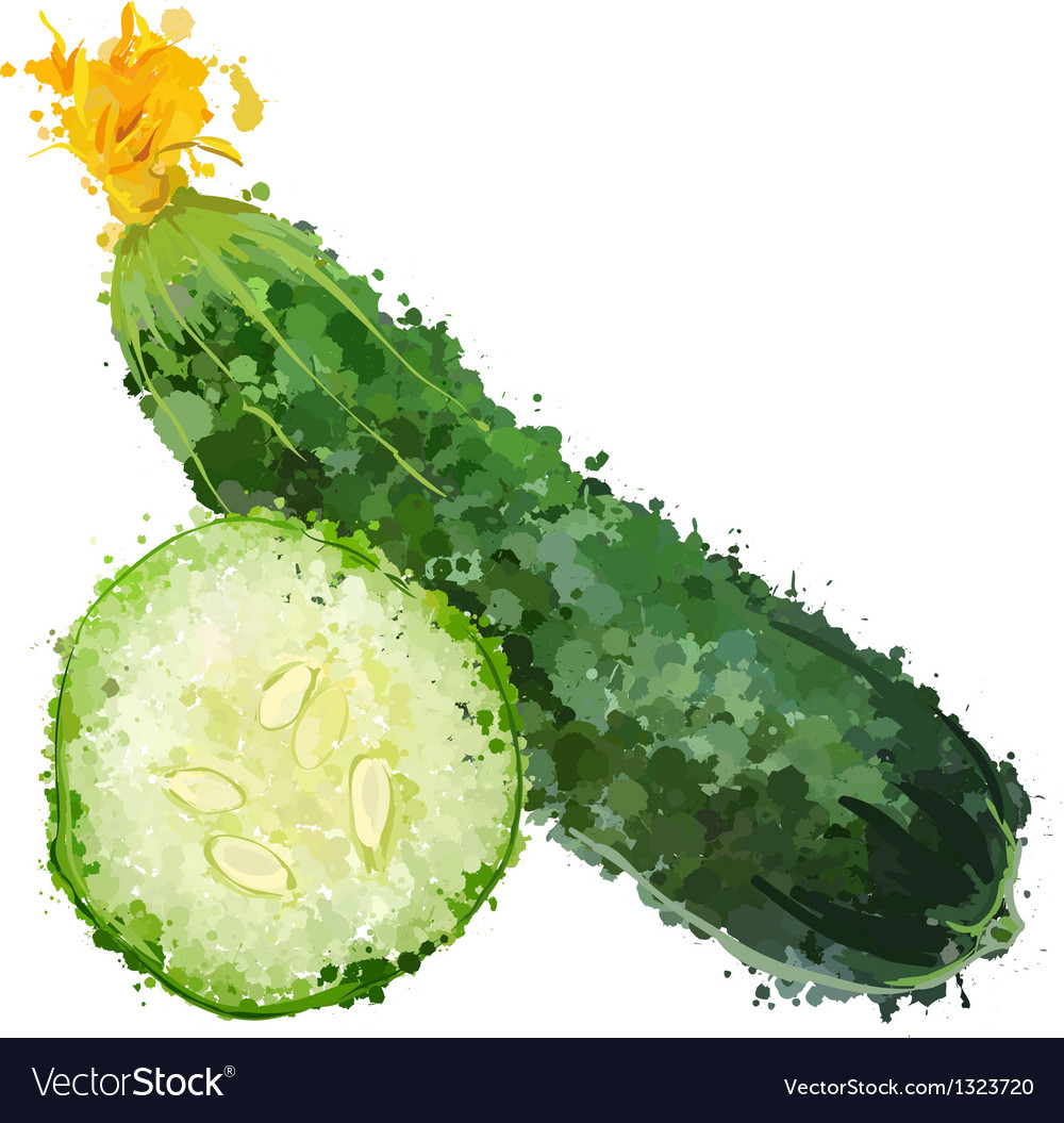 Cucumber vegetable of blots vector | Price: 1 Credit (USD $1)