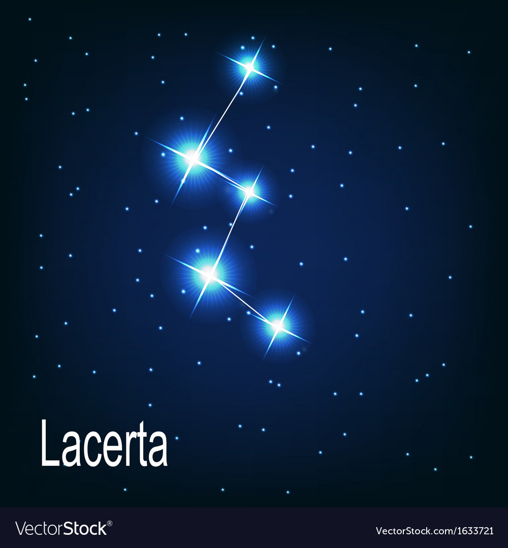 The constellation lacerta star in the night sky vector | Price: 1 Credit (USD $1)