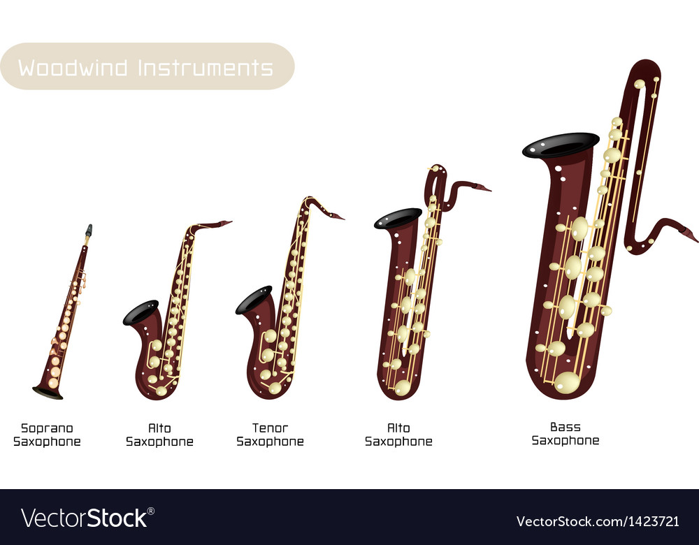 Different kind of musical saxophone vector | Price: 1 Credit (USD $1)