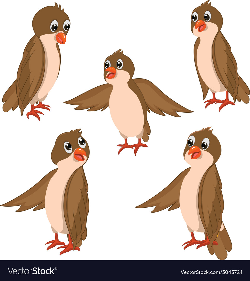 Brown birds set vector | Price: 1 Credit (USD $1)