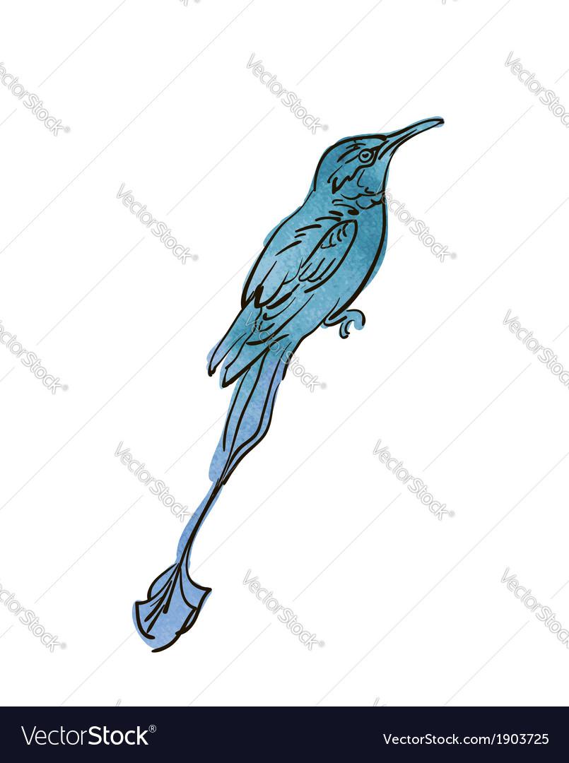 Artistic bird sketch vector | Price: 1 Credit (USD $1)