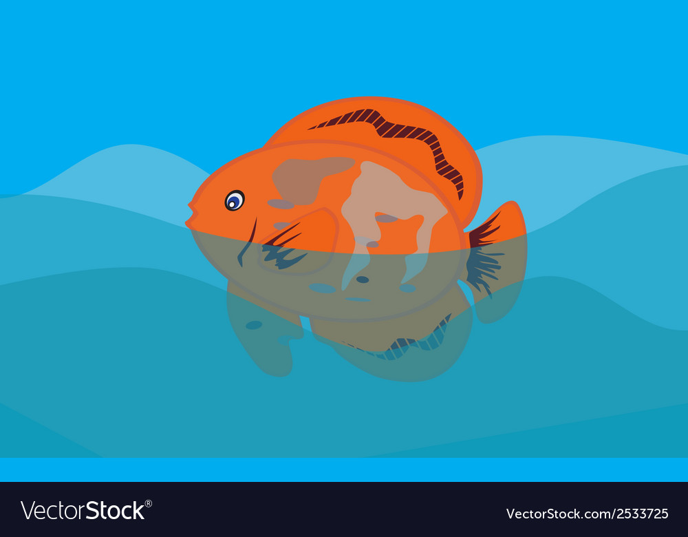 Orange fish in sea background  eps10 vector | Price: 1 Credit (USD $1)