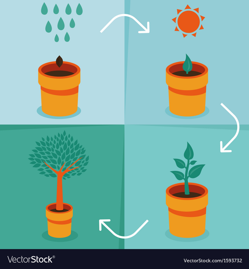 Growth concept vector | Price: 1 Credit (USD $1)