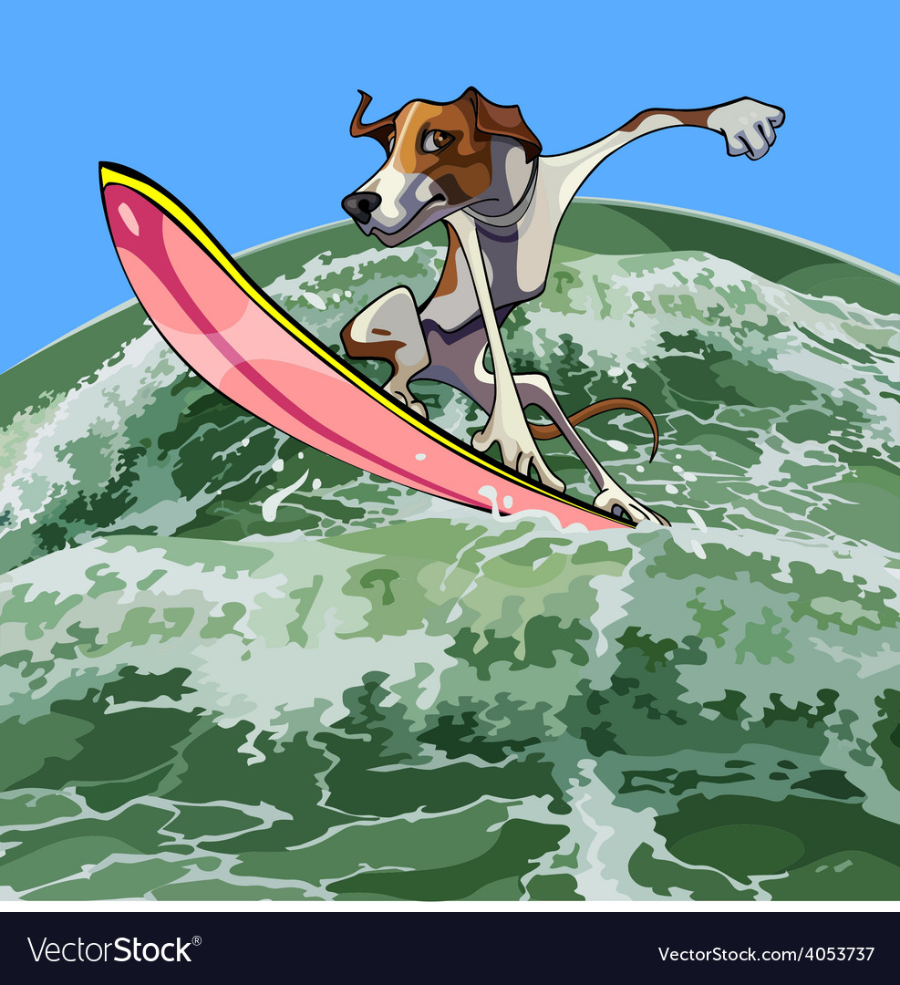 Cartoon dog surfer on a wave vector | Price: 3 Credit (USD $3)