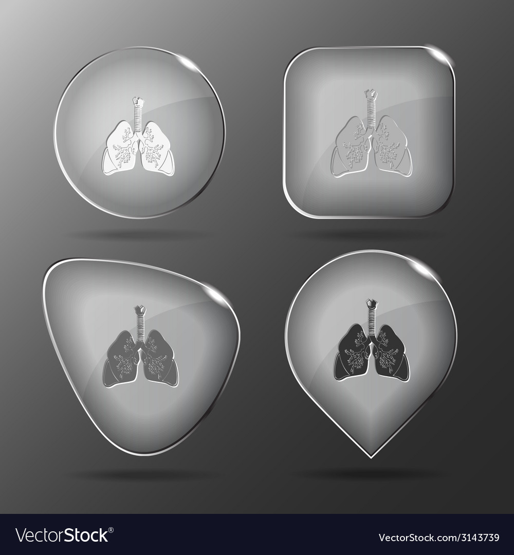 Lungs glass buttons vector | Price: 1 Credit (USD $1)