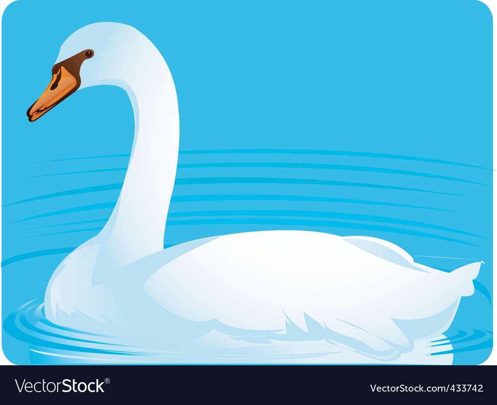 Swan vector | Price: 1 Credit (USD $1)