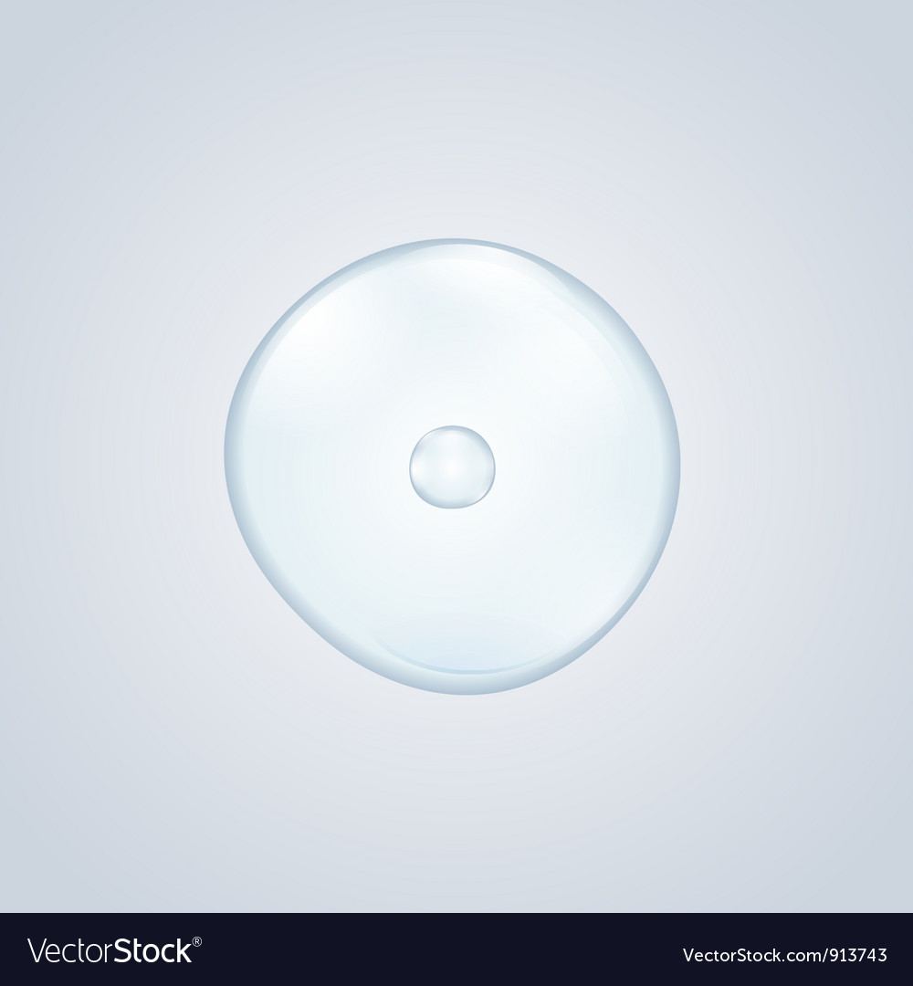 Egg cell vector | Price: 1 Credit (USD $1)