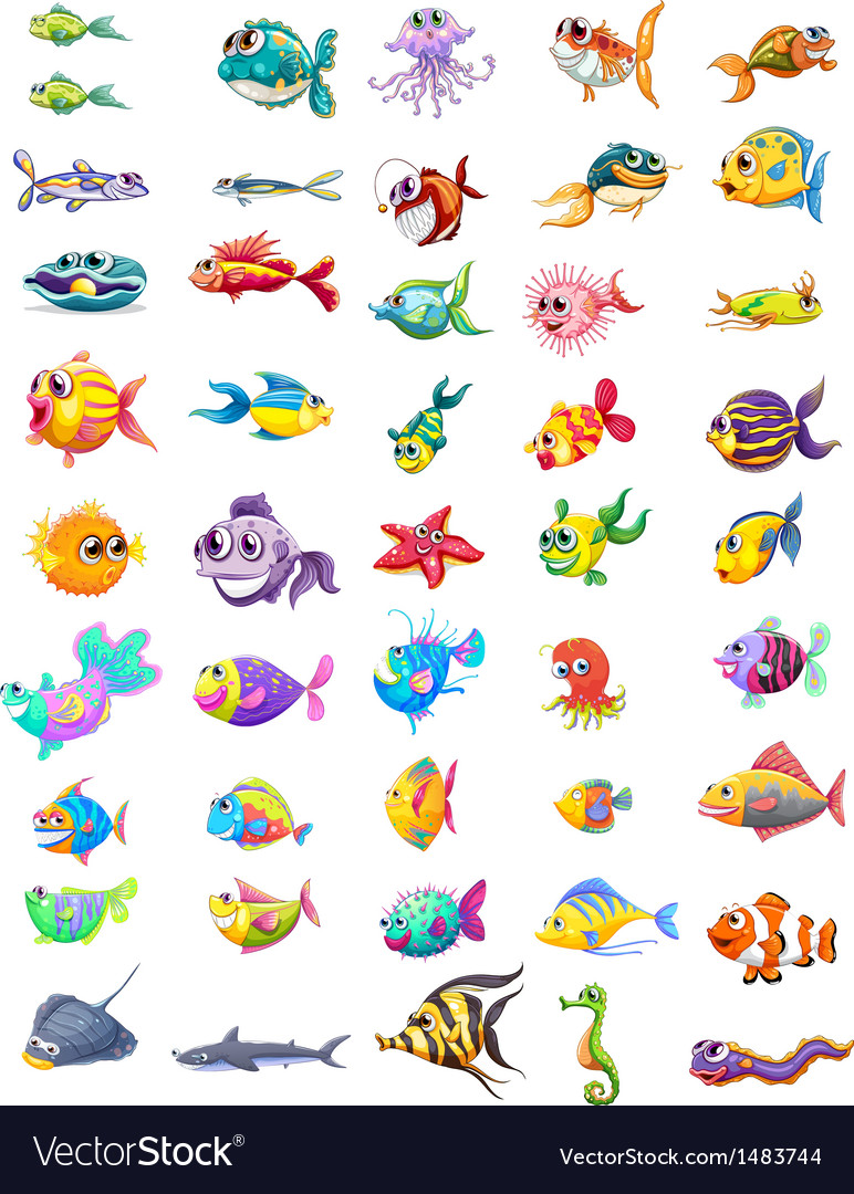 Group of different fishes vector | Price: 1 Credit (USD $1)