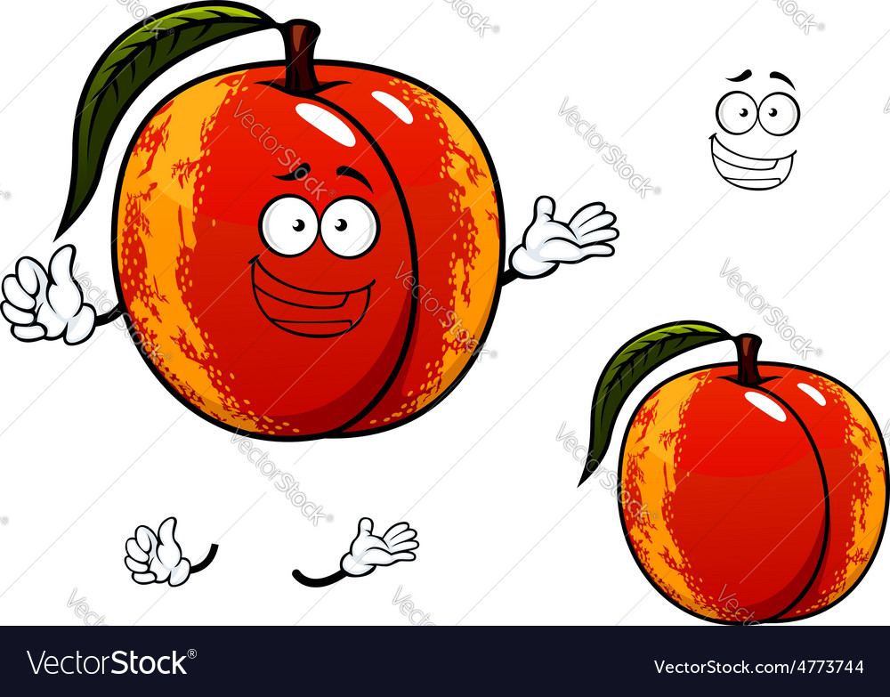 Nectarine fruit with leaf cartoon character vector | Price: 1 Credit (USD $1)