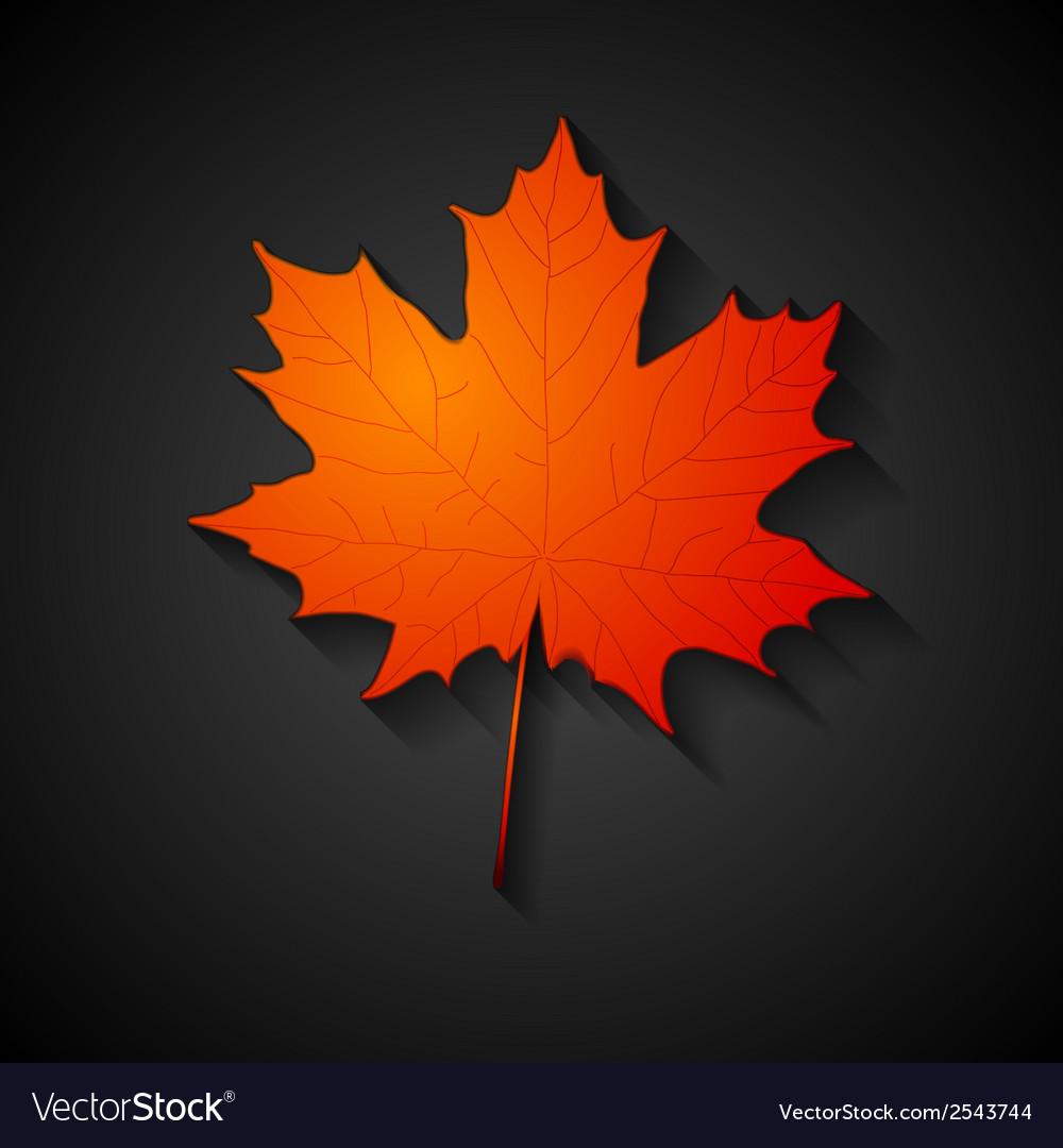 Red maple leaf autumn background vector | Price: 1 Credit (USD $1)