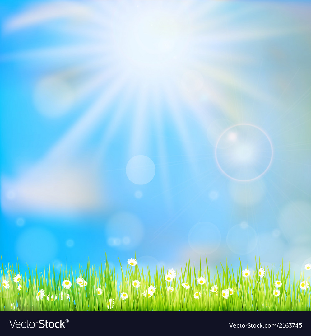 Spring or summer abstract nature eps 10 vector | Price: 1 Credit (USD $1)