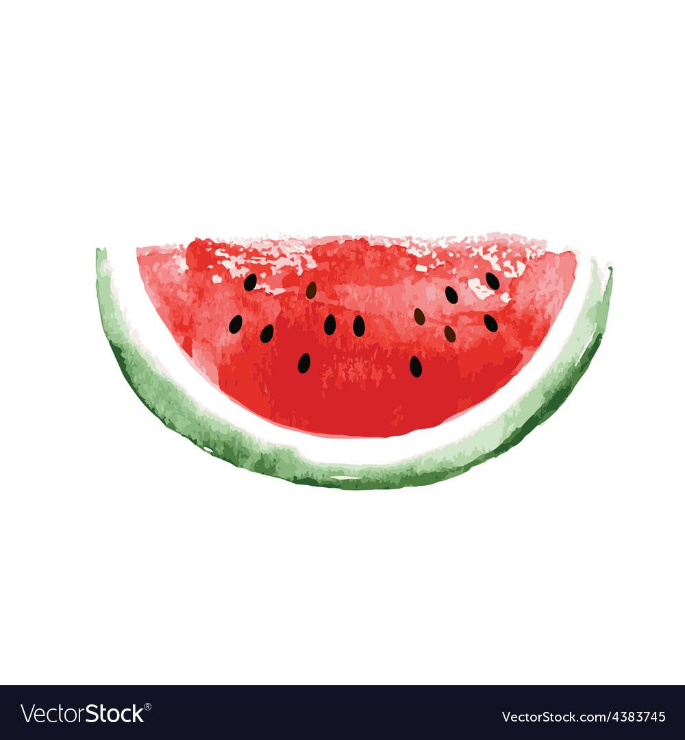 Watercolor watermelon vector | Price: 1 Credit (USD $1)