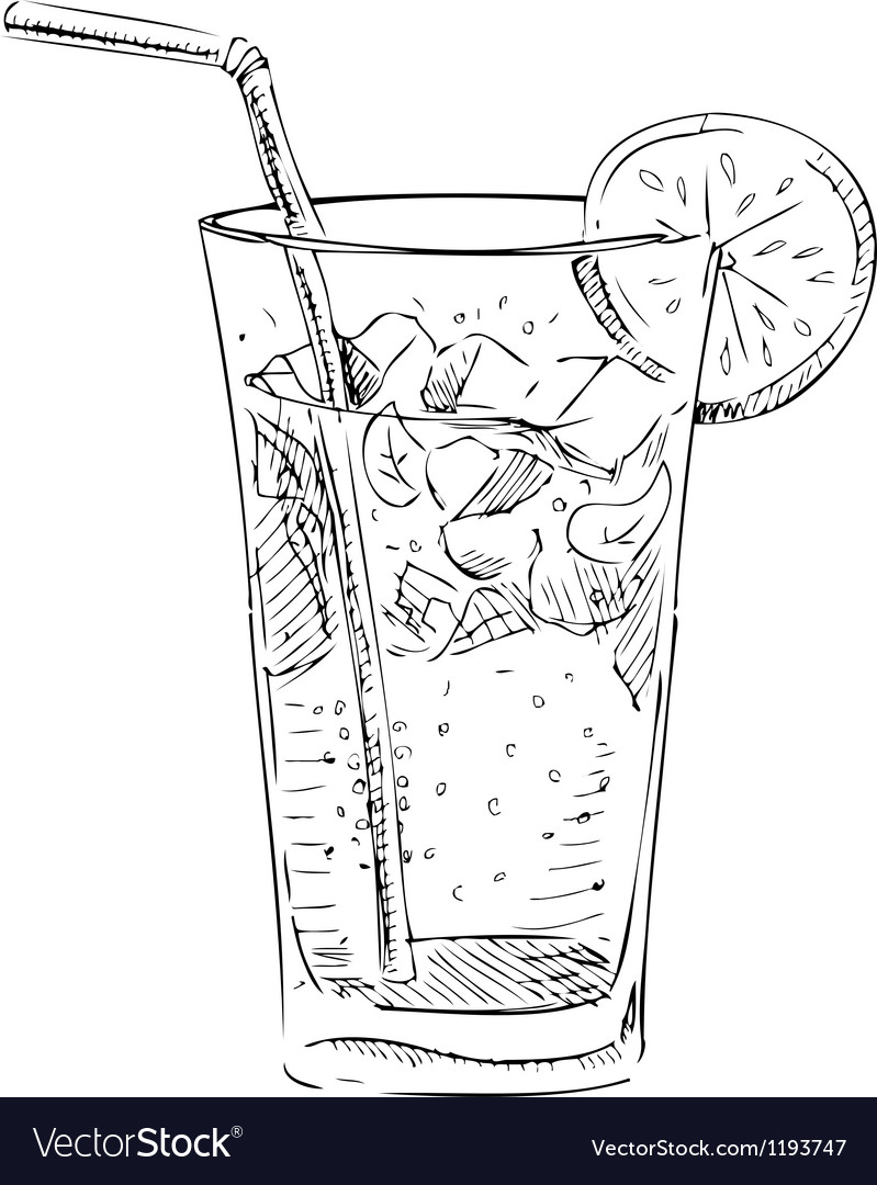Soda glass with citrus segment and ice cubes vector | Price: 1 Credit (USD $1)